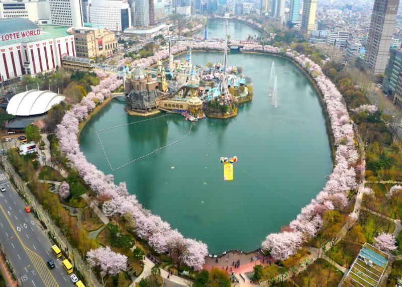 石村湖桜祭り