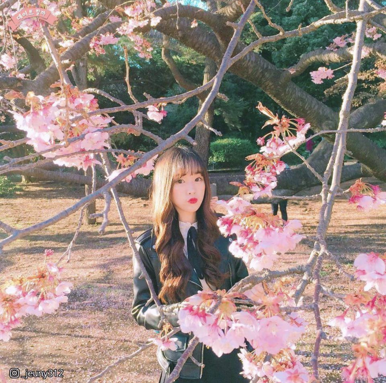 オルチャン 桜