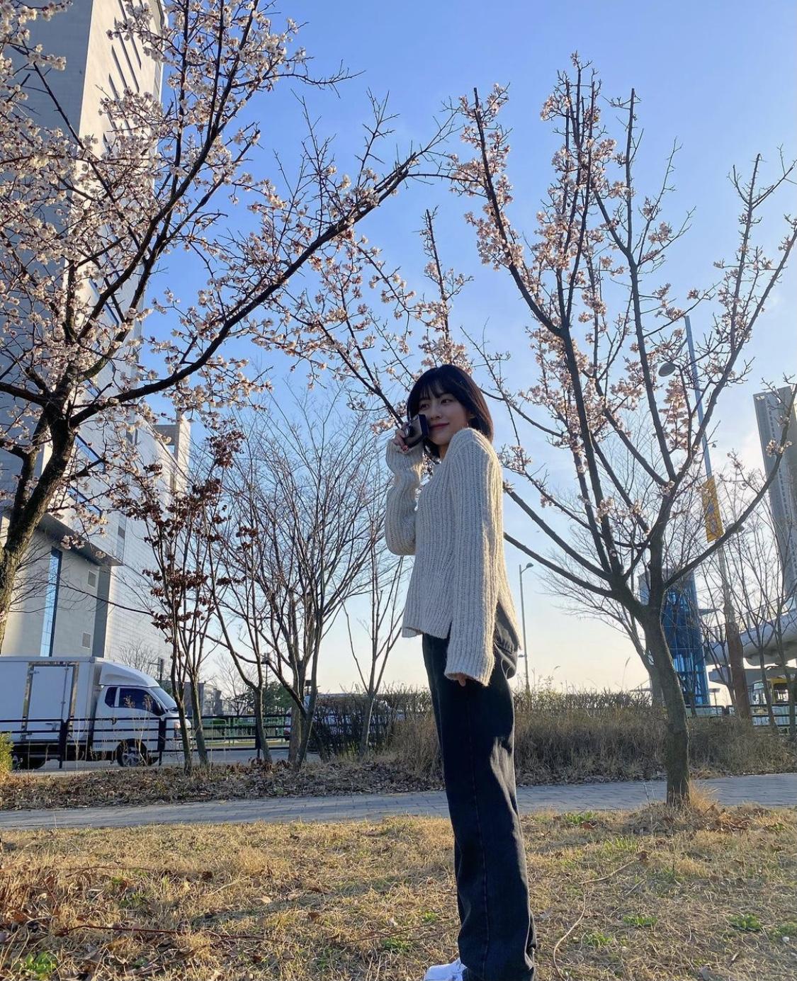 桜ショット カメラ