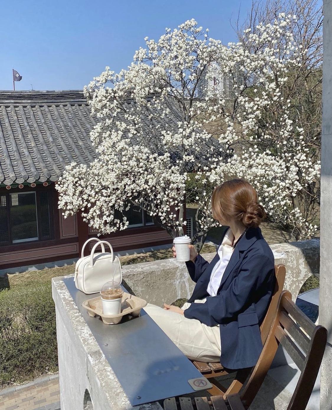 桜ショット カフェ